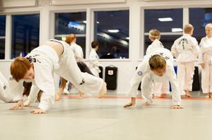 Taekwondo028.jpg