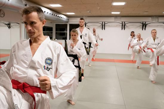 Taekwondo004.jpg