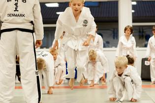 Taekwondo023.jpg