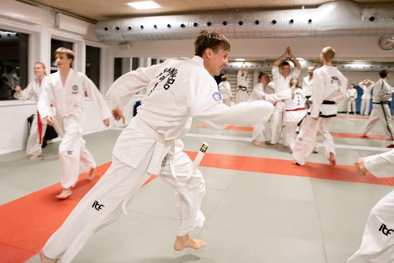 Taekwondo025.jpg