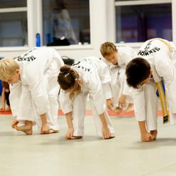 Taekwondo022.jpg
