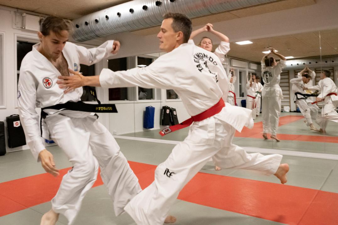 Taekwondo021.jpg