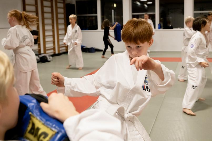 Taekwondo049.jpg
