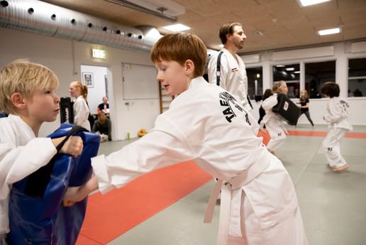 Taekwondo061.jpg