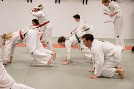 Taekwondo009.jpg