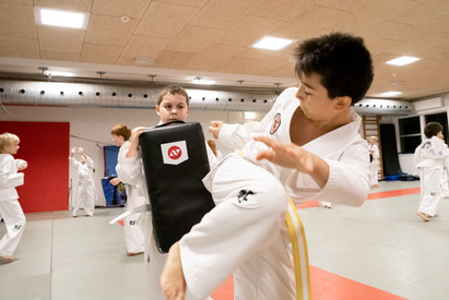 Taekwondo041.jpg