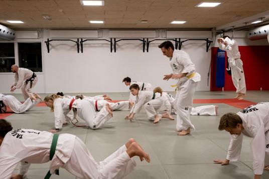 Taekwondo008.jpg