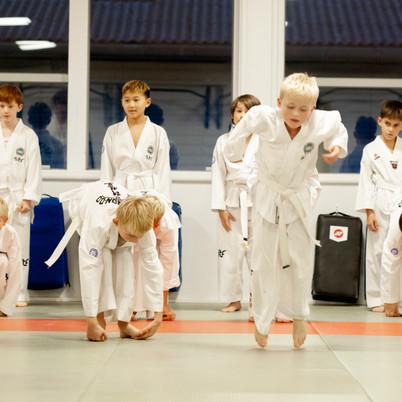 Taekwondo024.jpg
