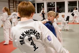 Taekwondo050.jpg