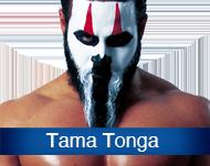 TamaTonga.png