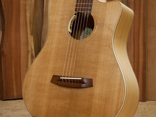 Gitarre für den Regenwald