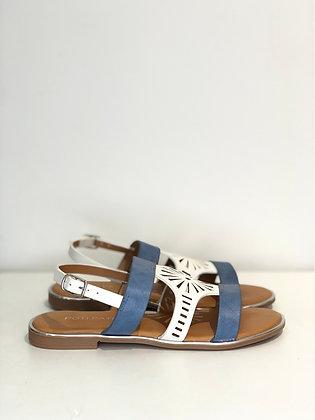 Shoes ve057