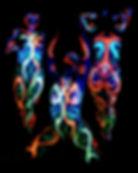 Glow Spandex.jpg