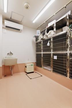 入院室(猫用)