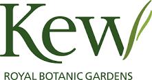Kew Gardens Xmas Wedding