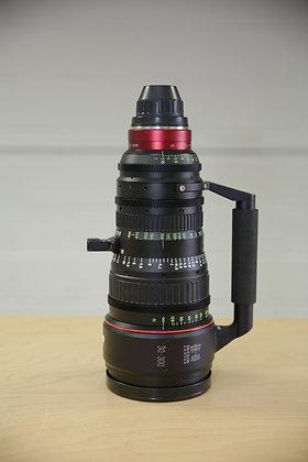 Canon 30-300 Zoom