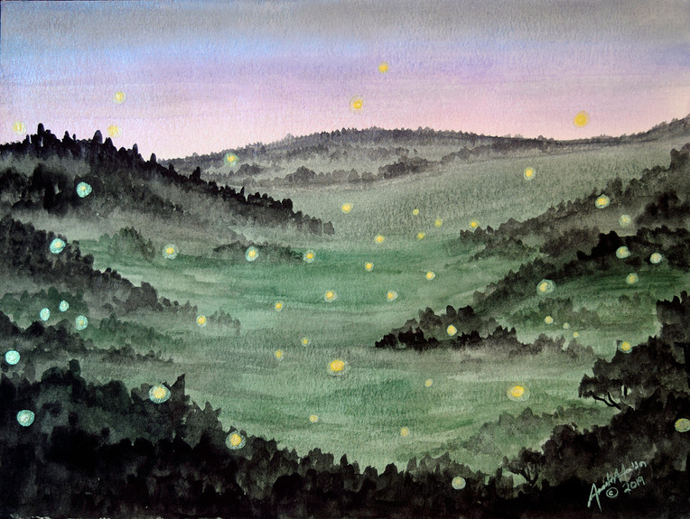 'Firefly Valley'