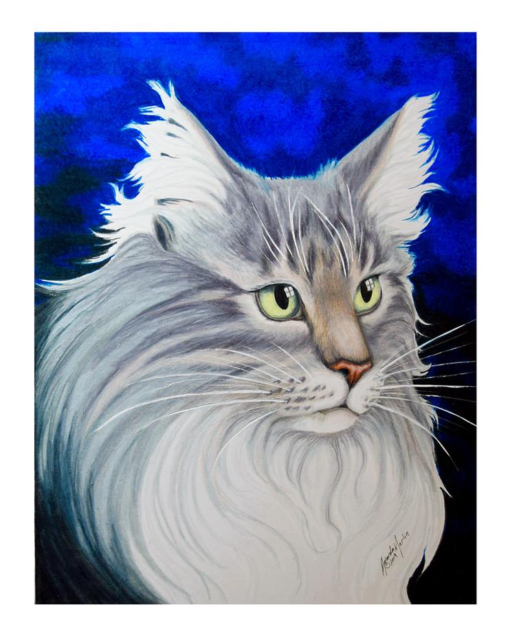 'Tippy' Portrait