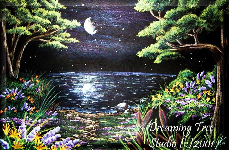 'Nightscape'