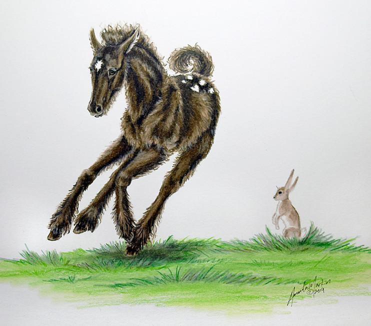 'Little Foal' #2