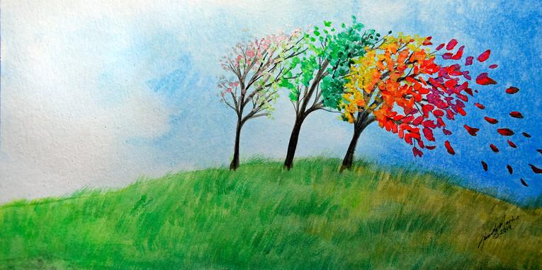 'Feeling The Seasons'