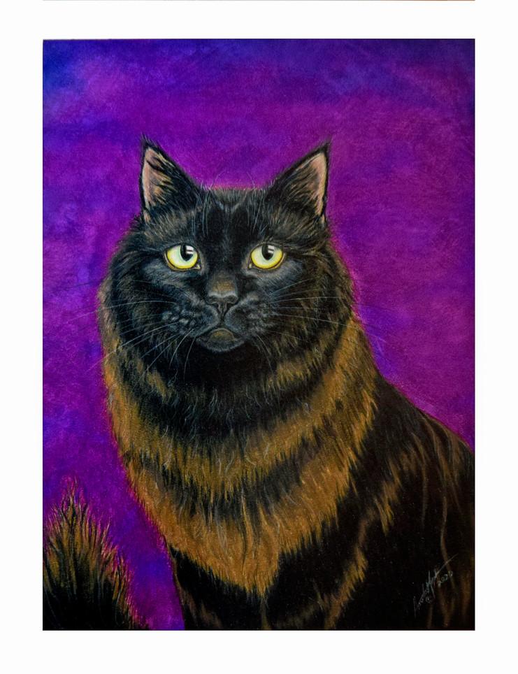 'Cinder' Portrait