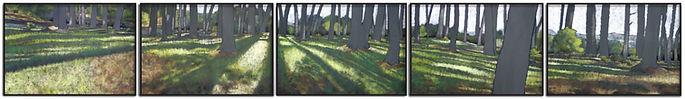 Jean Sanchirico, Morning Light on Forest