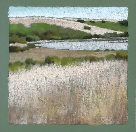 Tomales Bay Grasses I.jpg