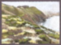 Marin%2520Headland-Summer%2520Coastal%25