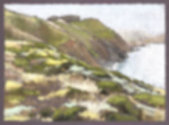 Marin%2520Headland-Summer%2520Coastal%25