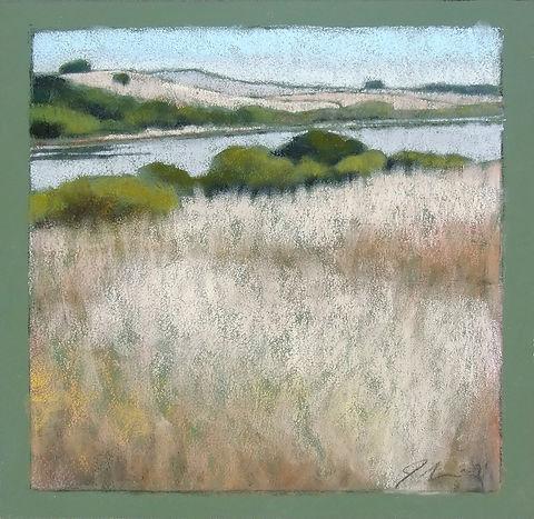 Tomales Bay Grasses II.jpg
