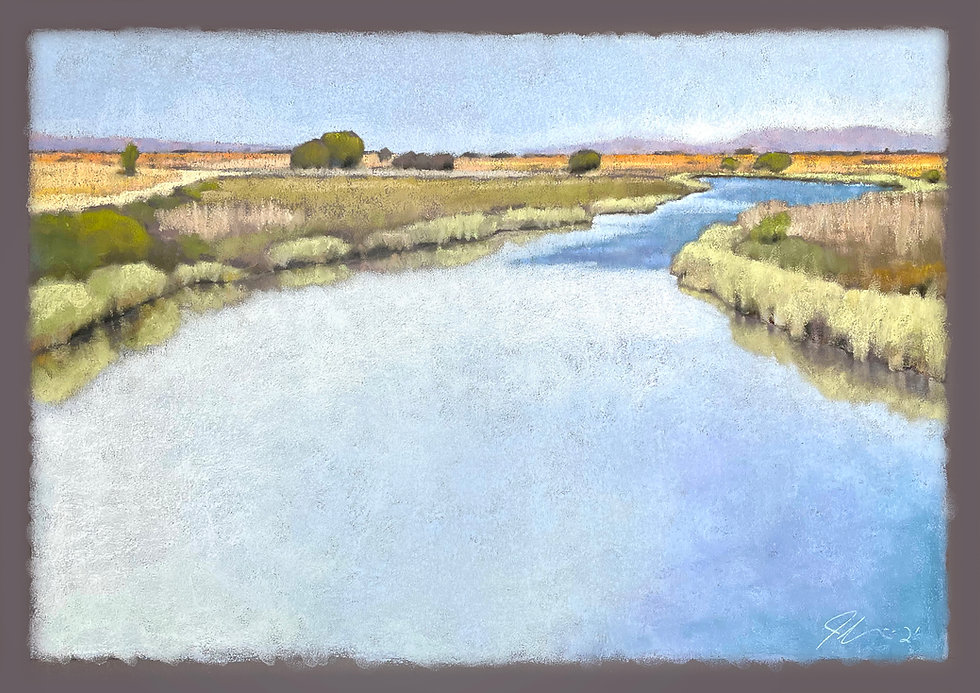 Gallinas Creek Wetlands.jpg