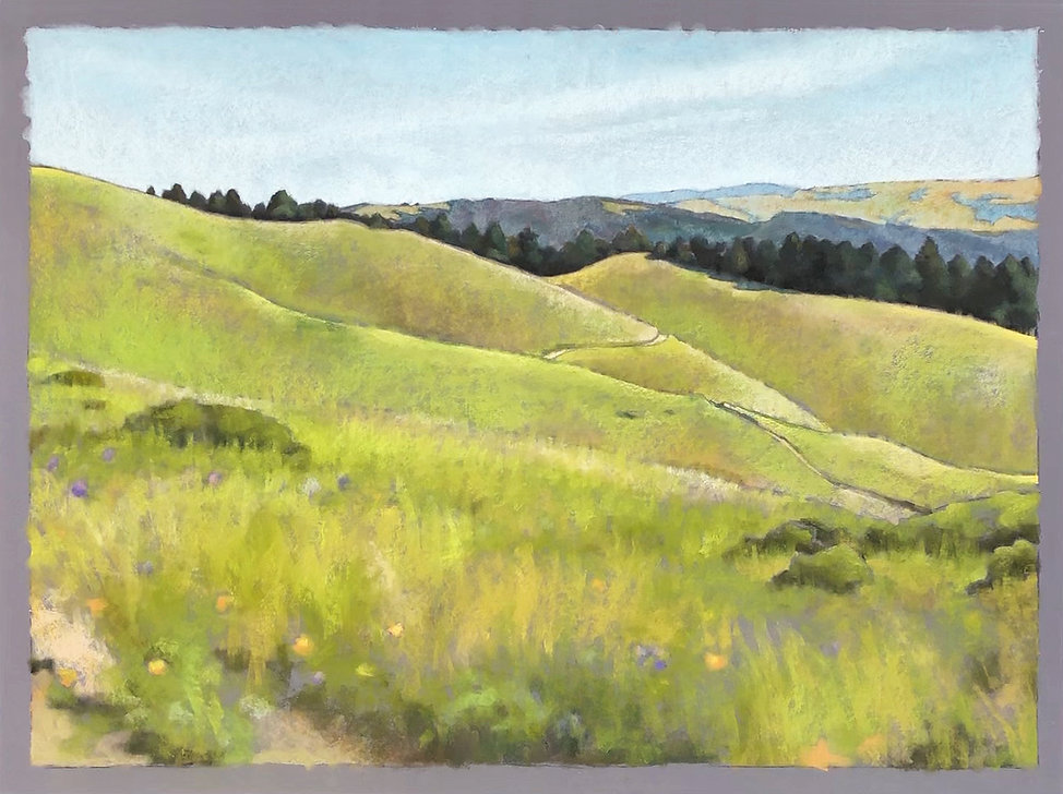 Mount Tamalpais Watershed, 30%22 x40%22