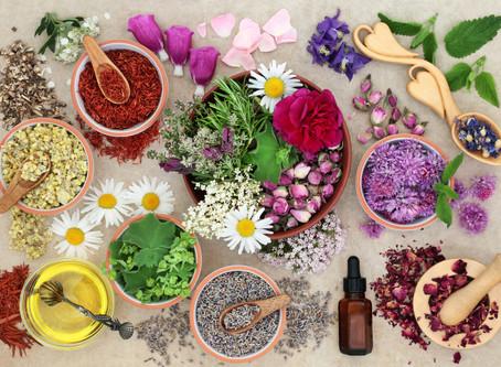 Herbalist or Holistic Herbalist ?