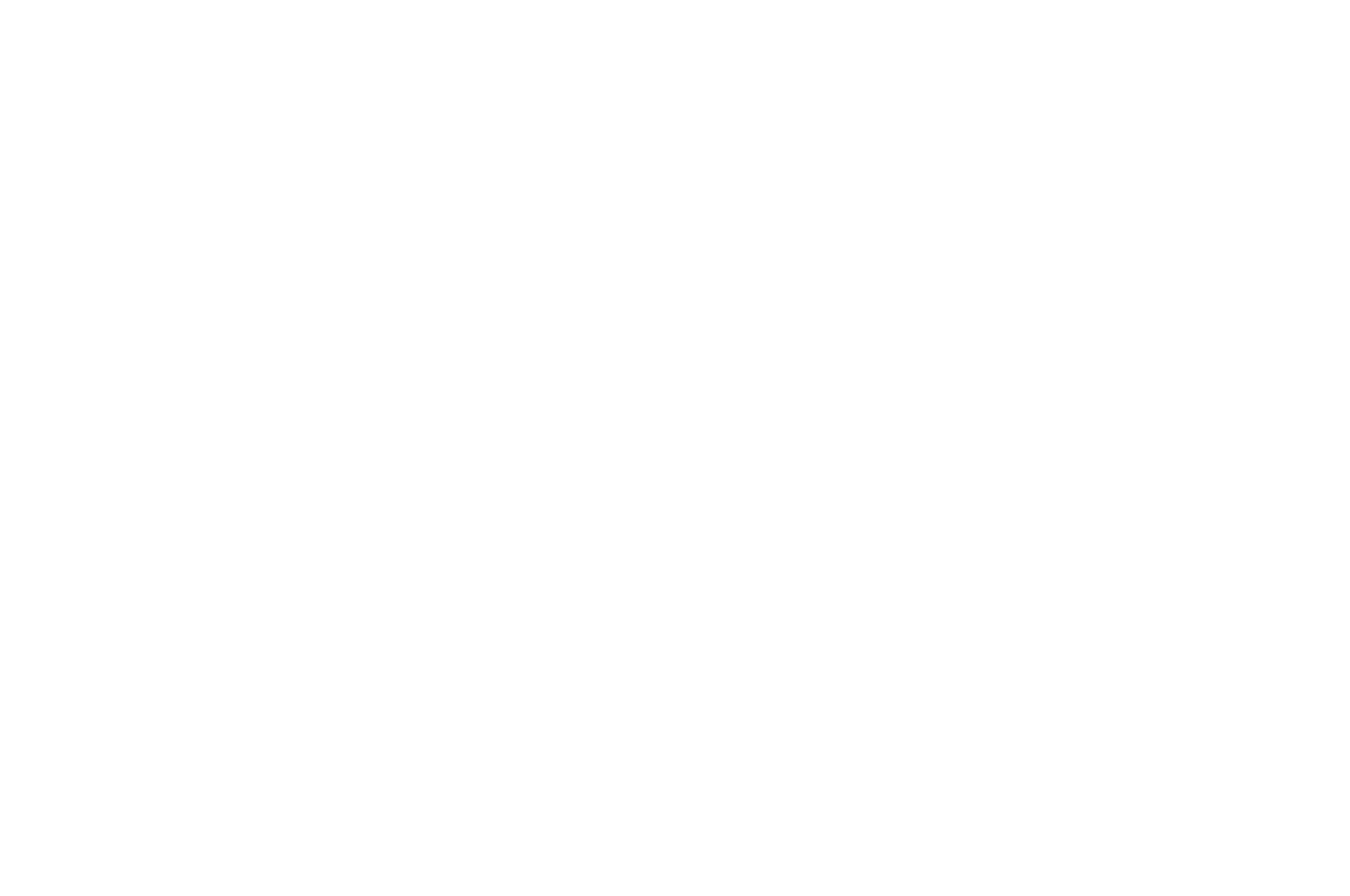 OFFICIAL SELECTION - IndieWise Virtual Festival - 2016