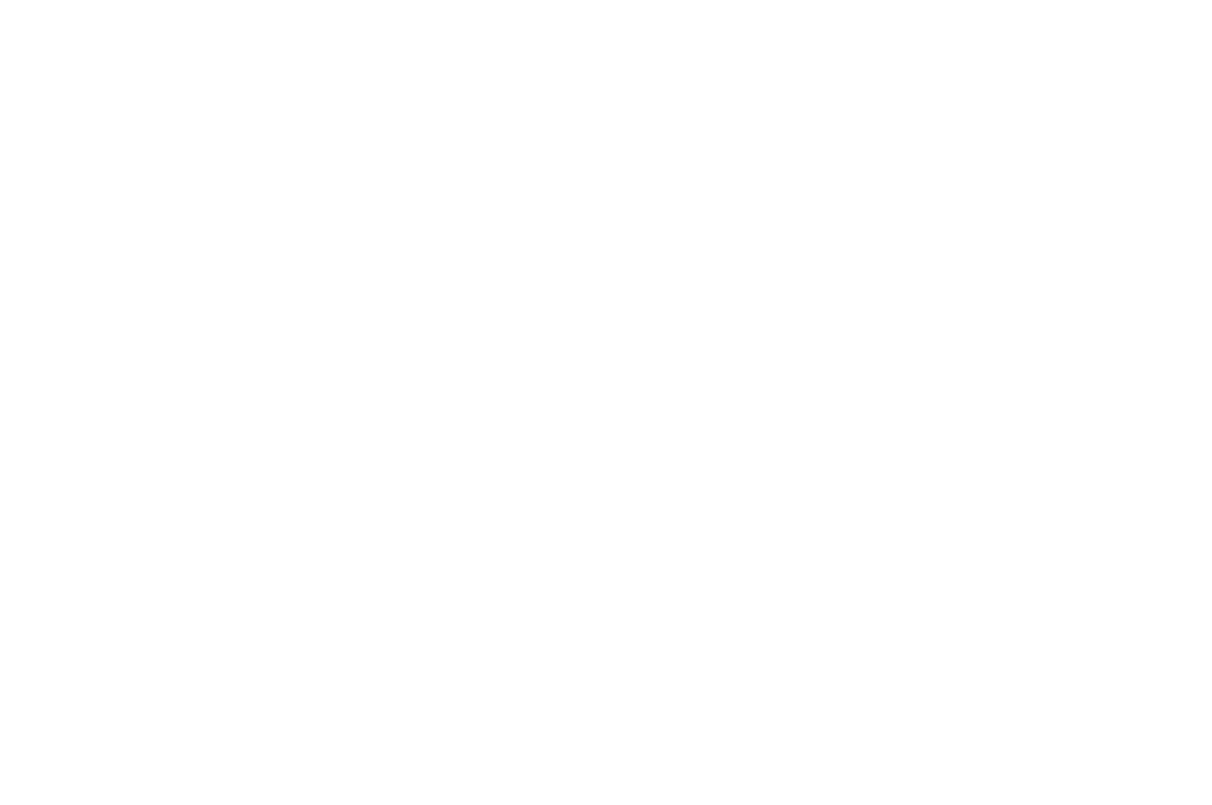 BEST SCREEN WRITER - TMFF - The Monthly Film Festival - 2016