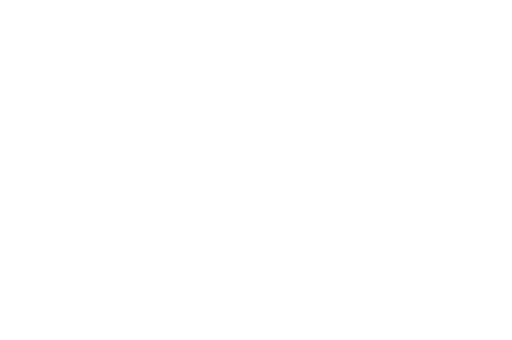 OFFICIAL FESTIVAL SELECTIONS