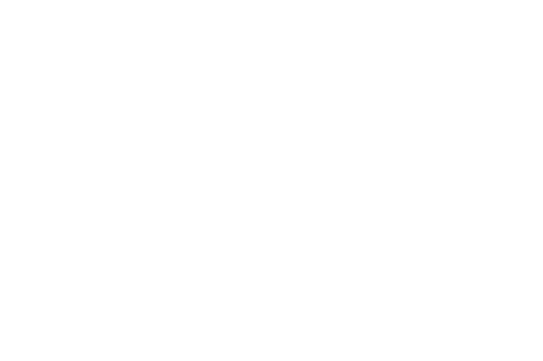 BEST DIRECTOR  - TMFF - The Monthly Film Festival - 2016
