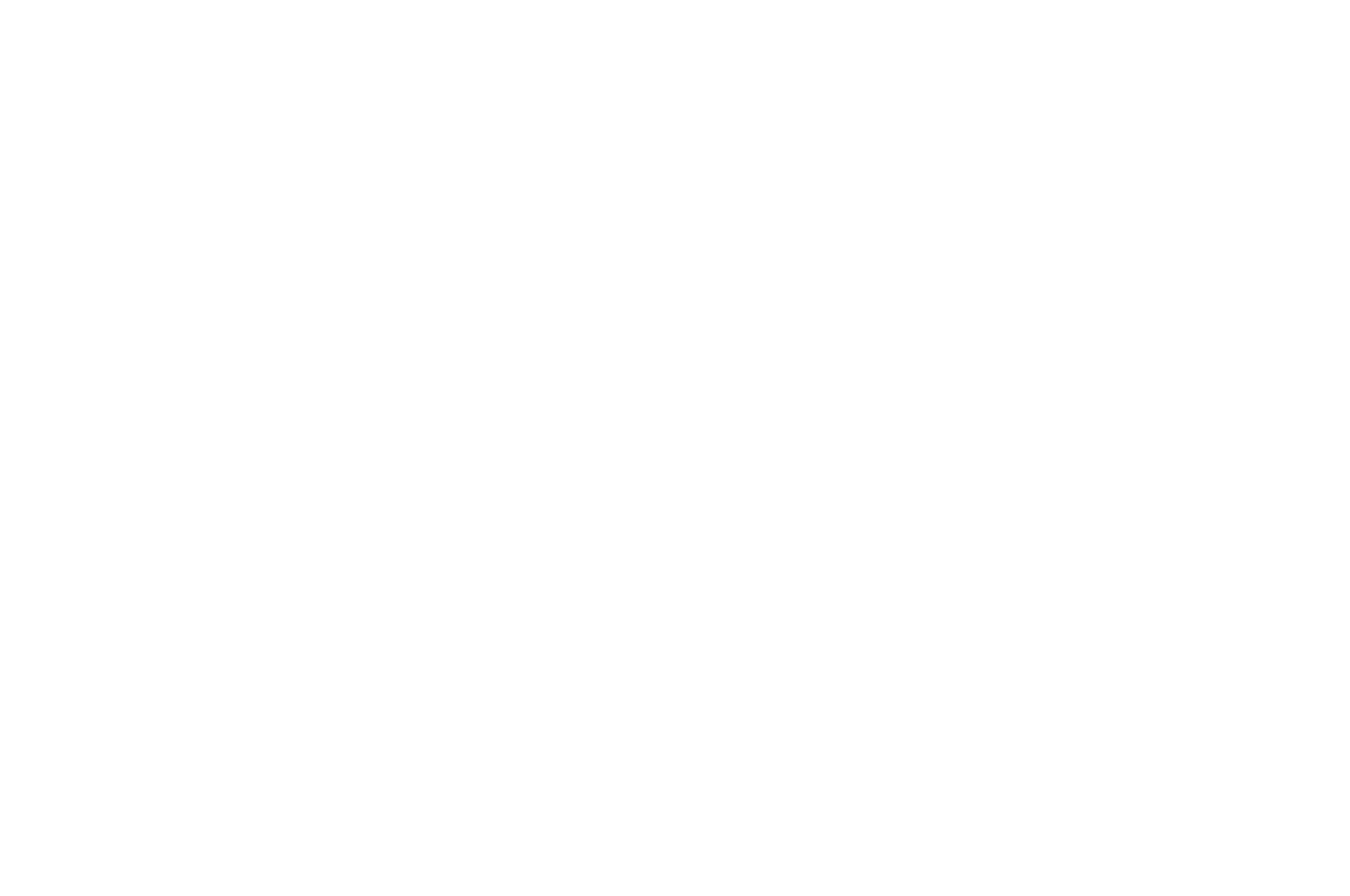 OFFICIAL SELECTION - Indie Night Film Festival - 2016
