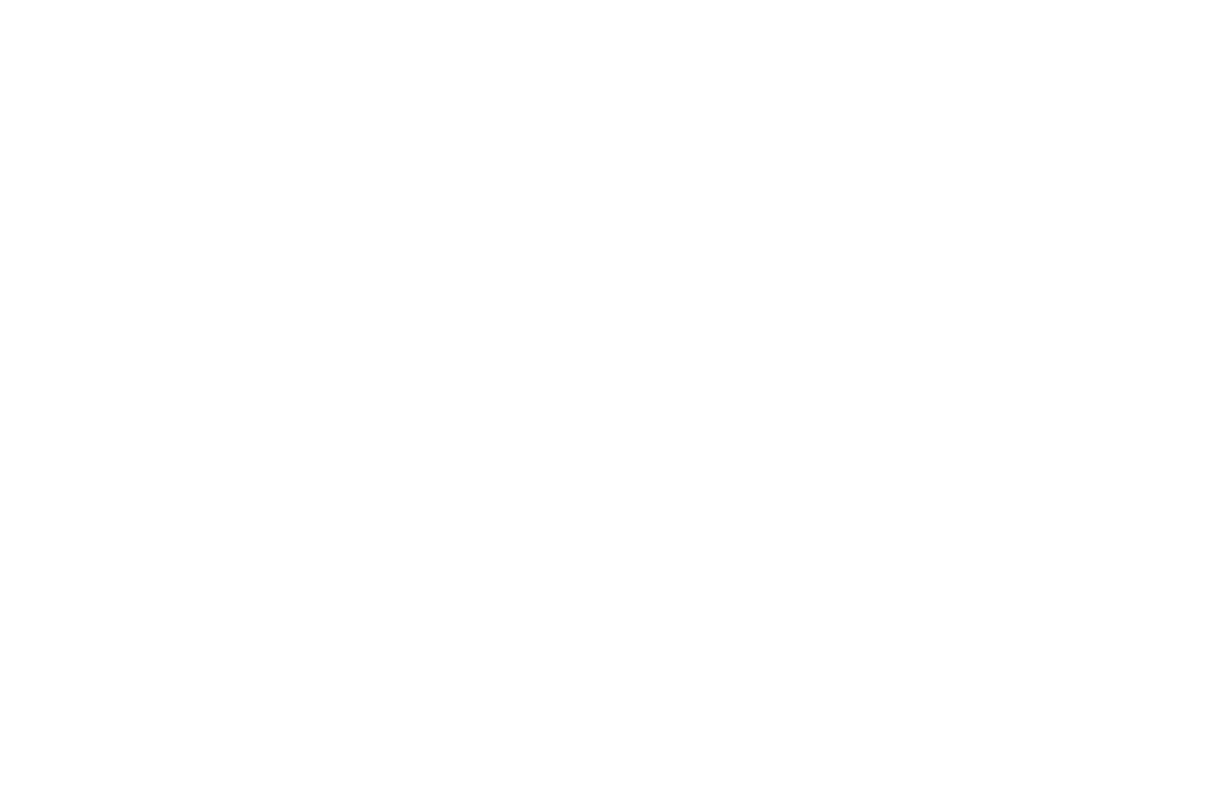 OFFICIAL SELECTION - Los Angeles CineFest - 2016