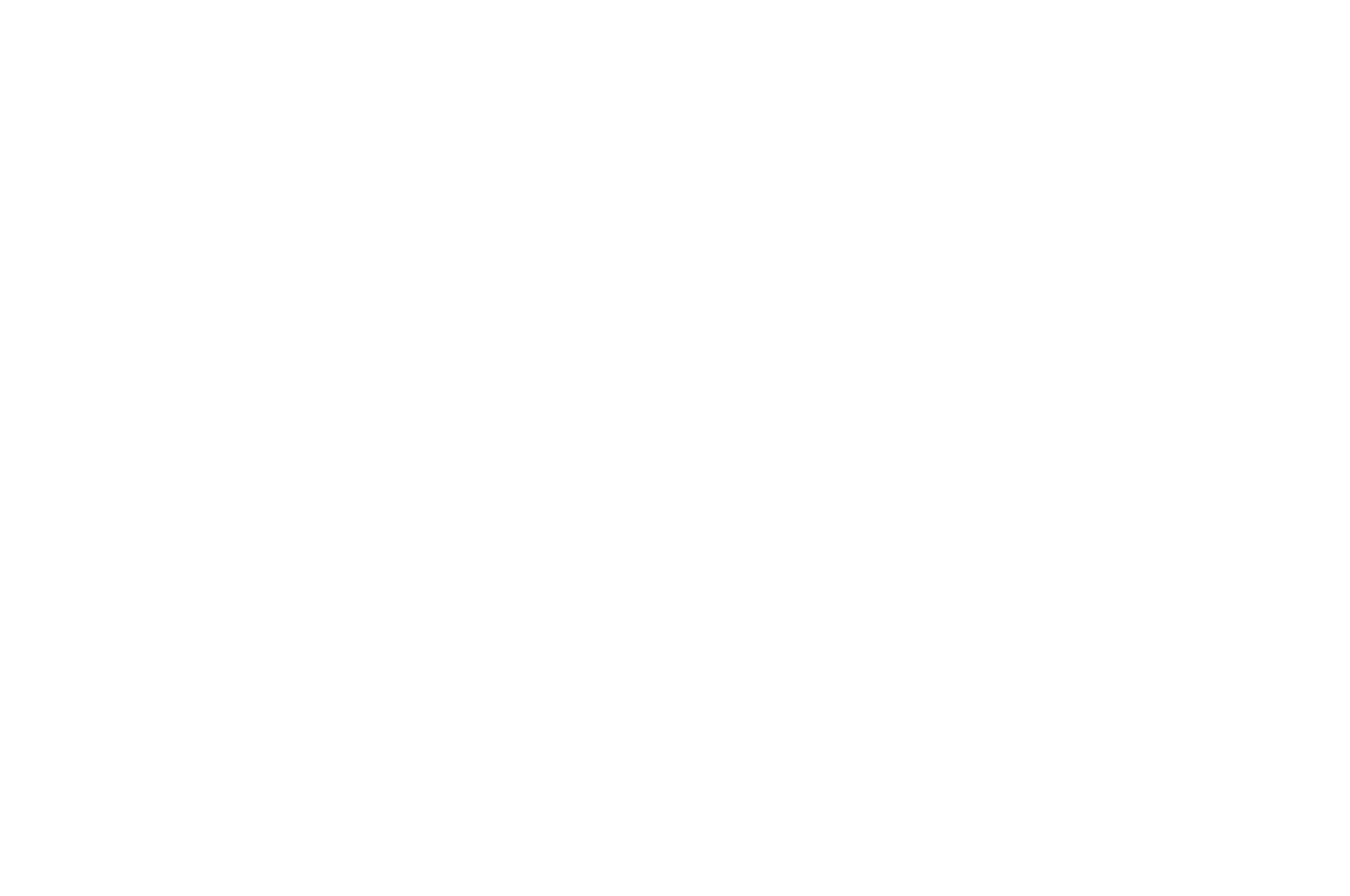 OFFICIAL SELECTION - Barcelona Planet Film Festival - 2016