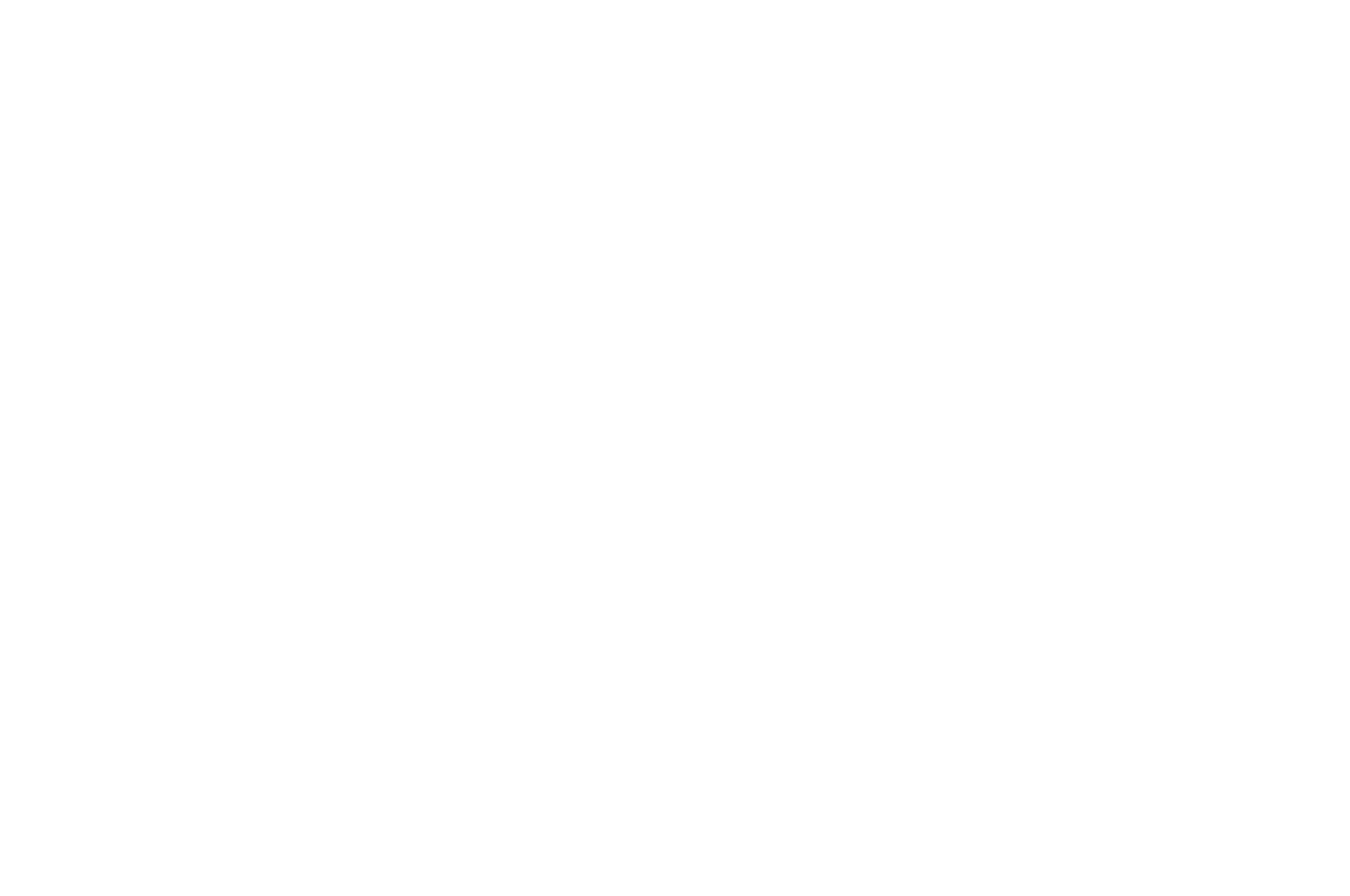 OFFICIAL SELECTION - Los Angeles Independent Film Festival Awards - 2016