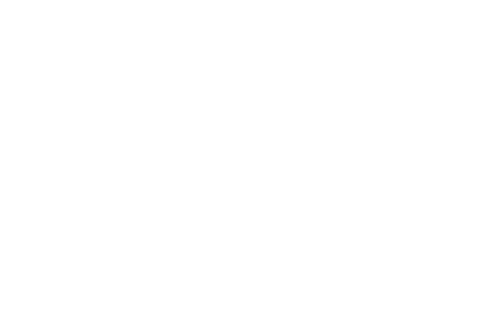 OFFICIAL SELECTION - Miami Independent Film Festival - 2016