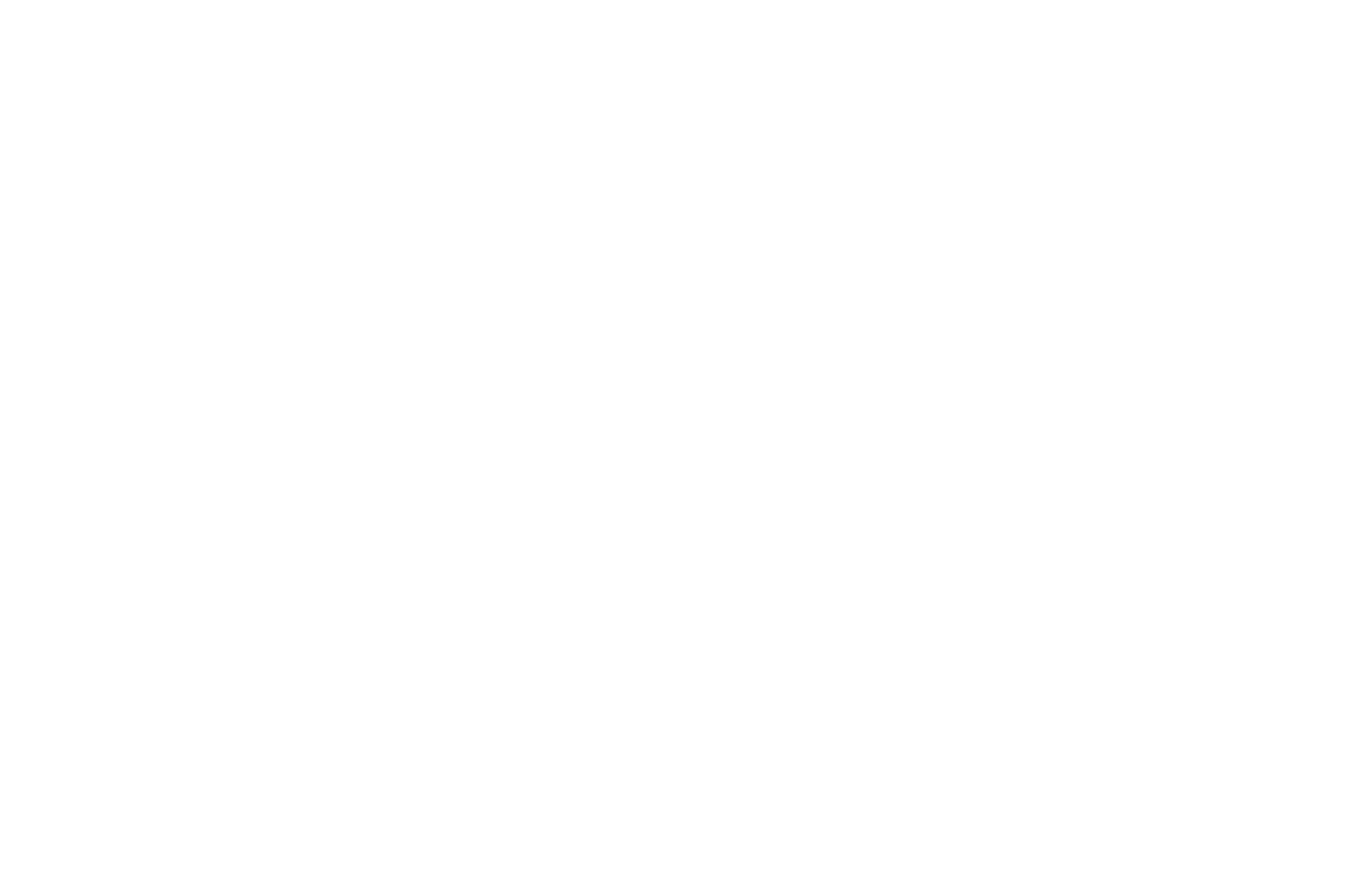 OFFICIAL SELECTION - Salem Short Film Festival - 2016