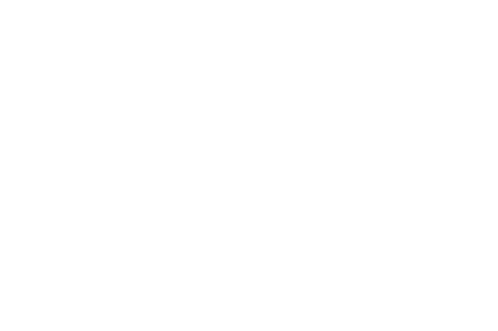 OFFICIAL SELECTION - Roma Cinema DOC - 2016
