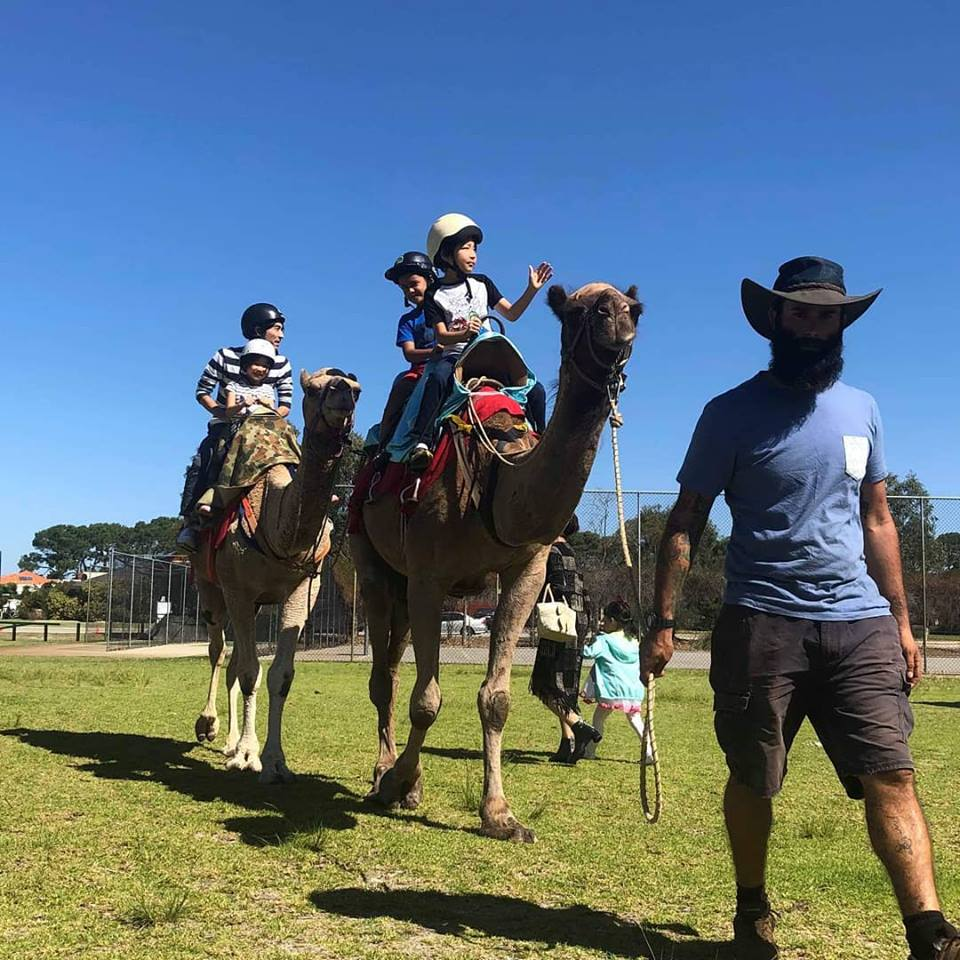 Kalbarri_Calamunda_Camels (10)