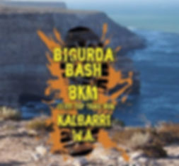 3 Birgurda Bash.jpg