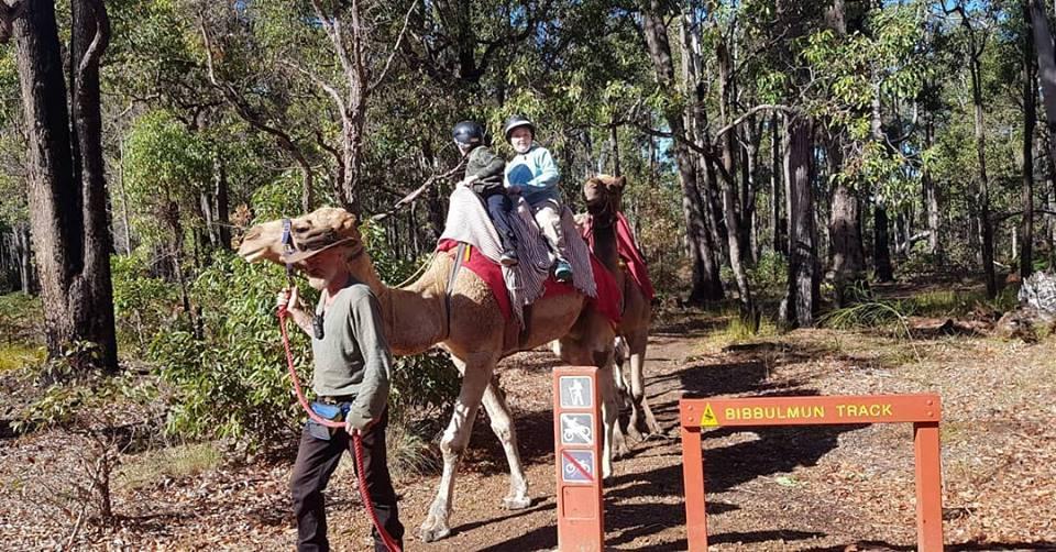 Kalbarri_Calamunda_Camels (13)