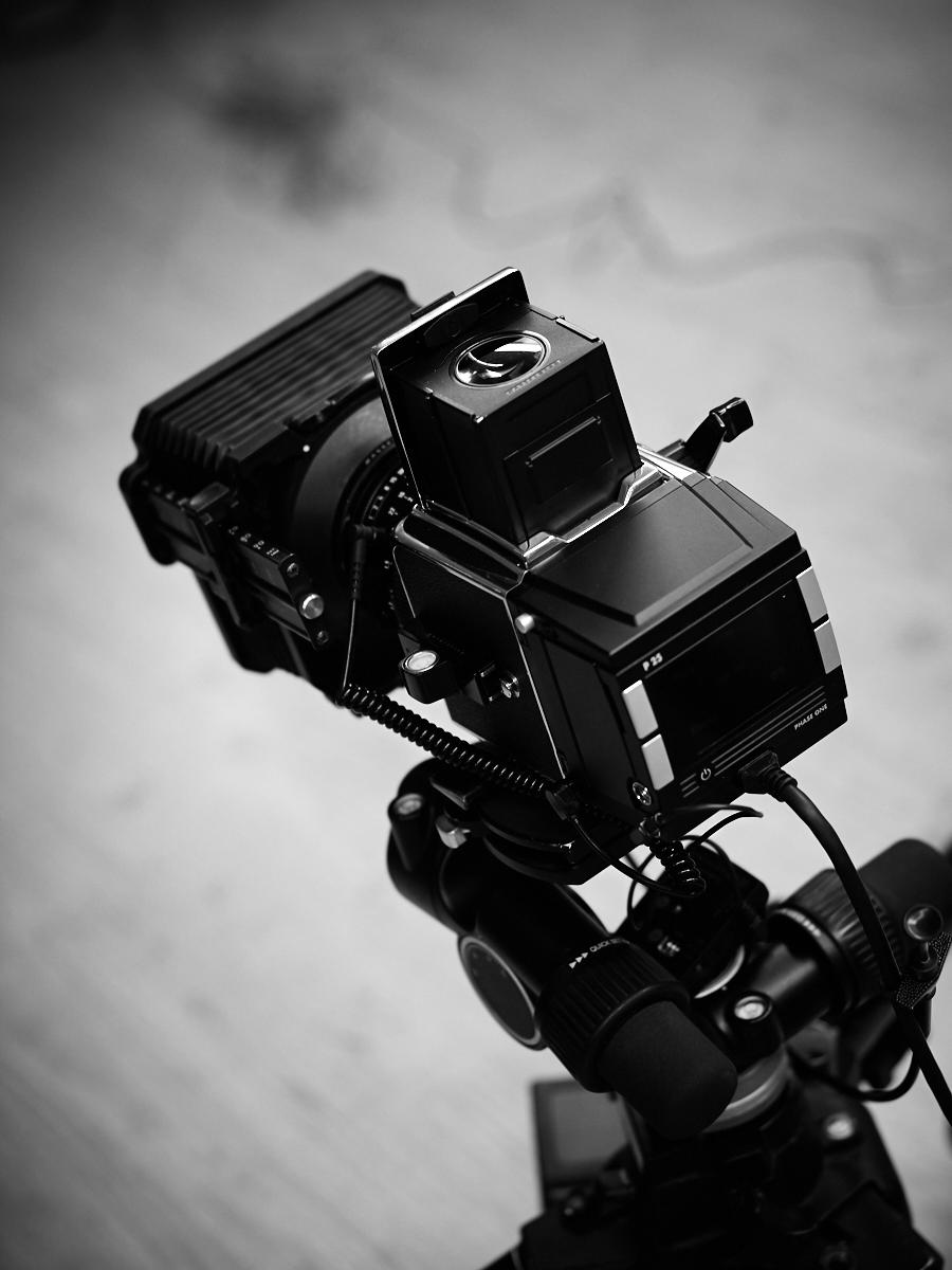 ea944655a8 Hasselblad 500 C/M + Phase One | Erwan Masson | Photographe moyen format à  Paris