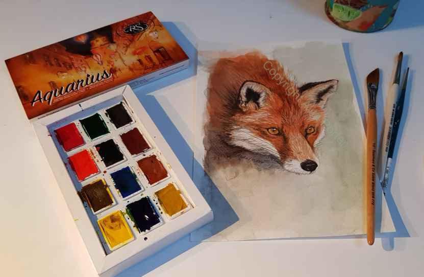 Fine art print, from watercolour fox